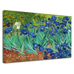 Picture Van Gogh - Irises - Van Gogh Irises Painting print on canvas with or without frame