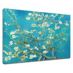La pintura de Van Gogh - de Almendra de la Rama de la Flor - Foto impresión en lienzo con o sin marco