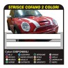 Adesivi Strisce Adesive Bonnet Stripes - fasce adesive cofano BICOLORE
